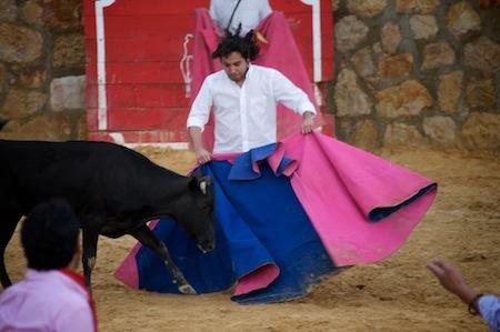 PardoMain Bogota.  Birthday.  Bullfighting.  Any Questions?